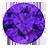 Amethyst (6)
